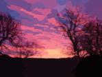 sunrise-md