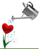 heart-watering-can-15241107