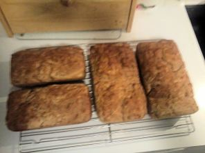 english muffin bread wheat