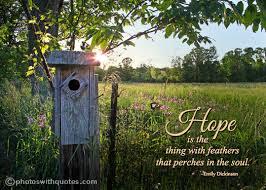 hope bird quote