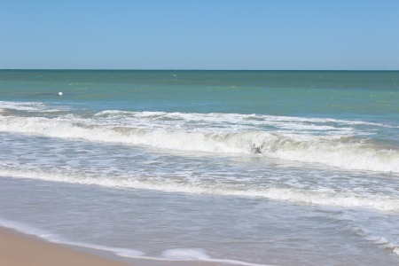 Vero Beach and Juno Beach 2014 043