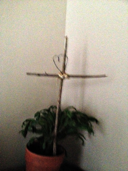 twig cross 2